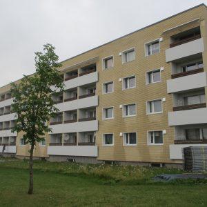 kivi-4-3